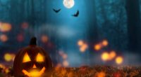 Halloween  is a wonderful opportunity for the school community to come together and have fun!  On Thursday, October 31st, all students are encouraged to bring a decorated pumpkin from home […]